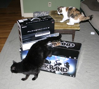 Belle and Corwin explore the PS3