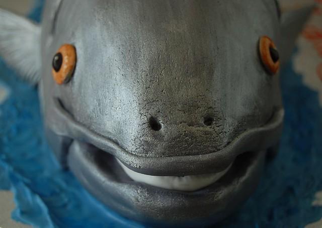 Coho Salmon Birthday Cake Fish Face Flickr Photo