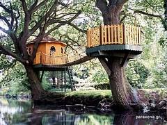 tree house,