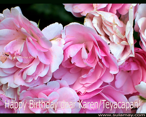 Roses for Karen/Teyacapan! Happy Birthday!