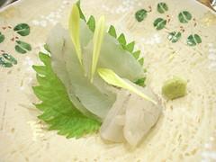 ヒラメの刺身 Sashimi of Flatfish