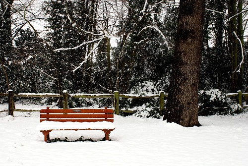 Park bench covered in snow | by Martin Pettitt