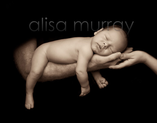 Newborn Baby Portrait Baby in parents hands