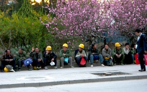 Beijing Peasant Workers