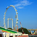 Singapore Flyer Day Time by Lil Snoop