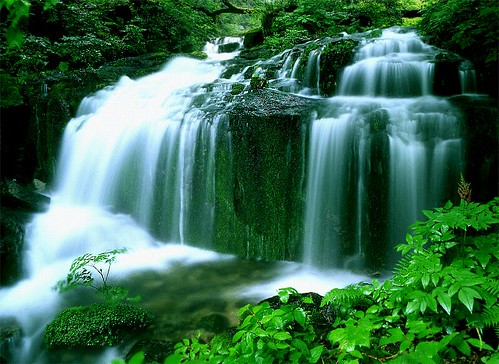 Waterfall & nature[가리왕산]