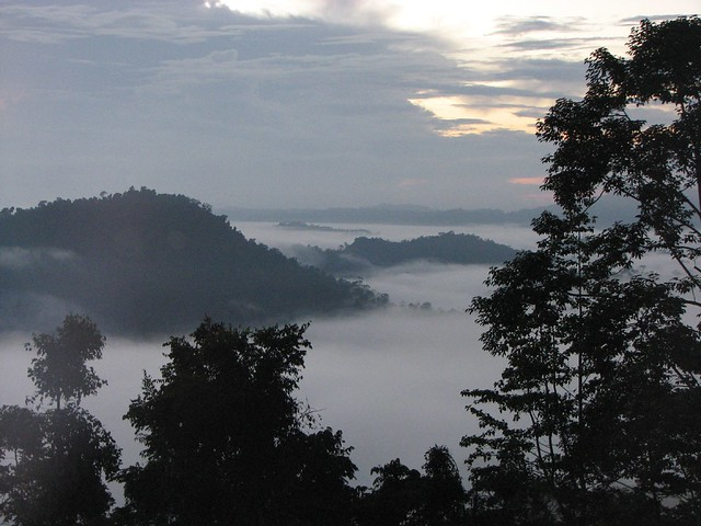 Sunrise in Danum Valley, Borneo