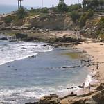 Laguna Beach Trip 17