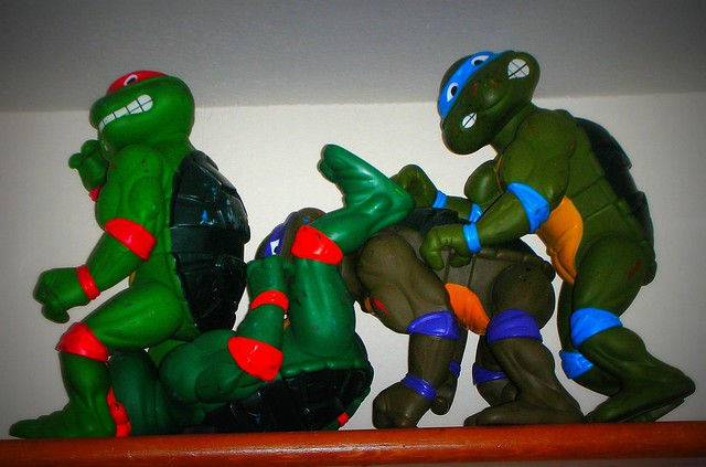 Teenage Mutant Ninja Y Flickr Sharing