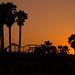 Santa Monica Silhouettes (Explored) by Thilo S.