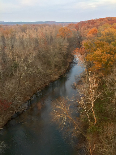 autumn colors appomattox river highbridgetrailstatepark view tree water fall park virginia