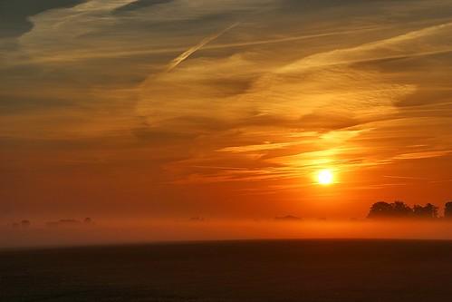 Foggy sunrise (Explore 2014-03-07)