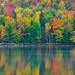 Fall Color Reflected, Adirondacks