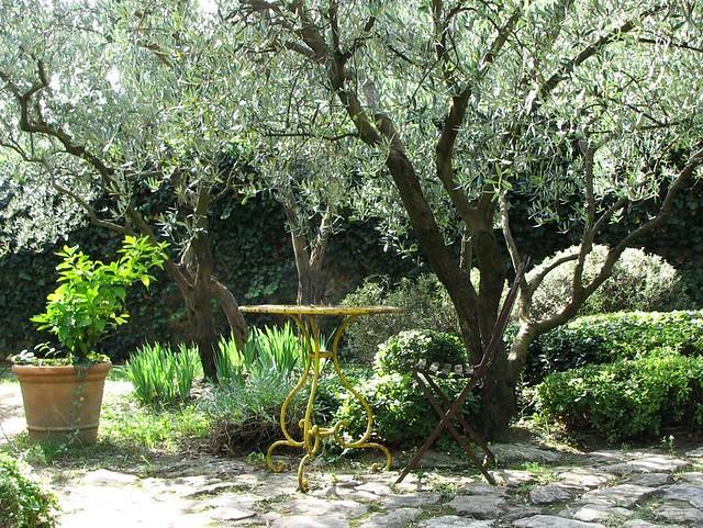 Le jardin provençaux de Pierre Bergé (par Michel Semini)
