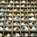 Monsieur Faurie's glass eye collection by gwendolyn true