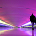 Detroit (DTW) Airport Tunnel of Light by michales
