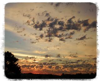 dopamine clouds over craven cot