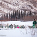 Wed, 02/15/2017 - 10:09 - Yukon Quest 2017 - Julien Schroder