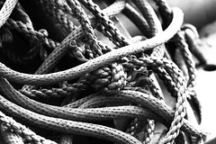 monochrome photography, close-up, rope, monochrome, black-and-white, black,