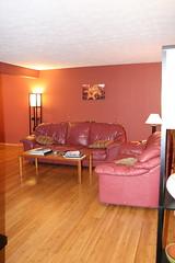Remodeled Living Room (w/ flash)