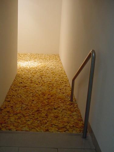 Piscina de patatas fritas en el museo de arte moderno