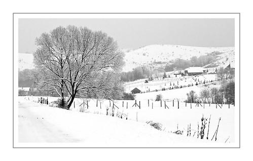bw landscape 85mm télwinter
