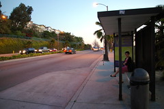 Waiting for the Long Beach Transit Bus 22