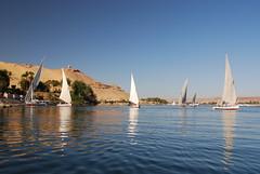 EGYPT January 2008 (3) 193