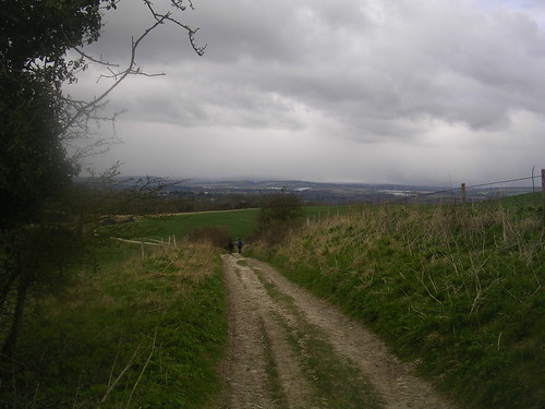 Down from the downs
