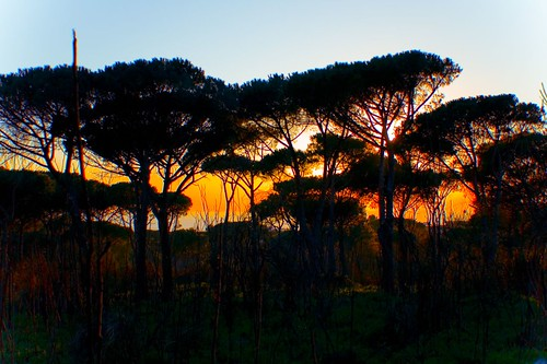 Torre del Greco: Safari Sunset!!!