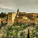 Alhambra - Granda - España by Nino H