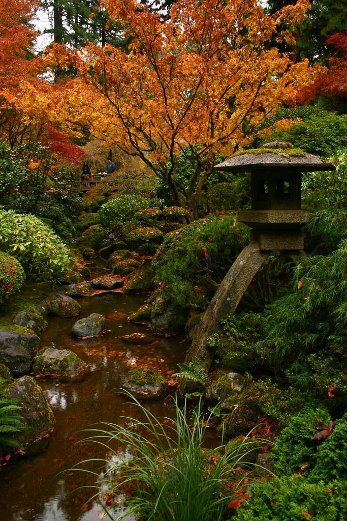 Rhone Street Gardens Autumn At The Portland Japanese Garden
