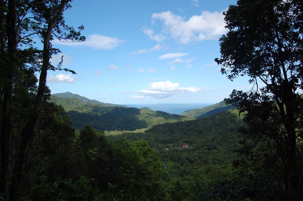 Dominica_0597