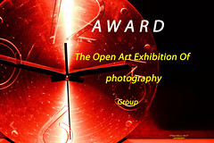 **THE OPEN ART EXHIBITION OF PHOTOGRAPHY!**