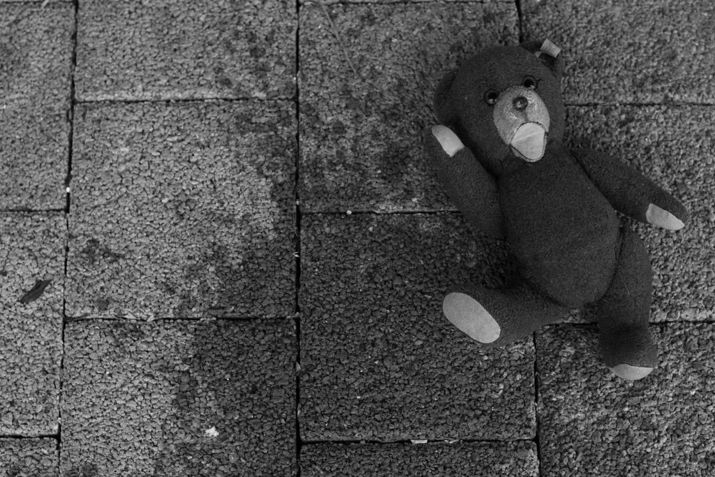 The Terrified Teddy