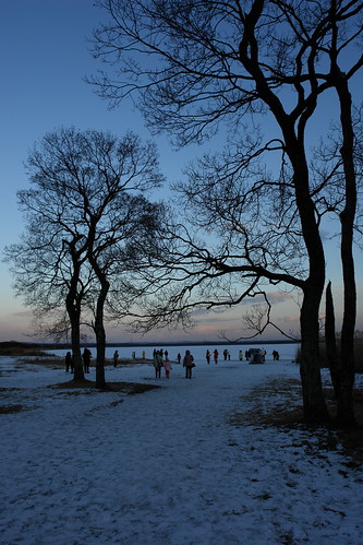 sunset sky lake snow tree silhouette japan landscape hokkaido swanlake pick 天鵝湖 苫小牧 golddragon aplusphoto ウトナイ湖