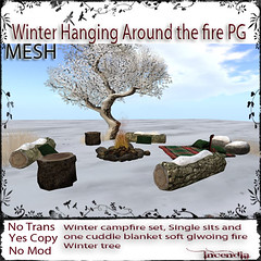 Winter Hanging Around the campfire