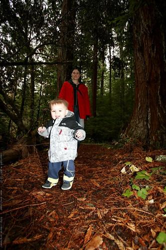 rachel & sequoia under the heritage grove redwoods    MG 7894