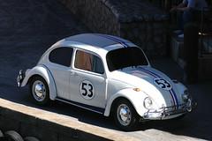 model car, automobile, volkswagen beetle, automotive exterior, wheel, vehicle, automotive design, volkswagen new beetle, city car, compact car, antique car, land vehicle,