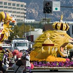 Pasadena Rose Parade 2008 29