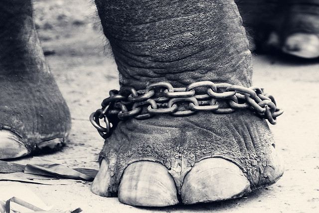 Chained!!! by Vinoth Chandar