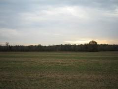 shelby park, memphis 068