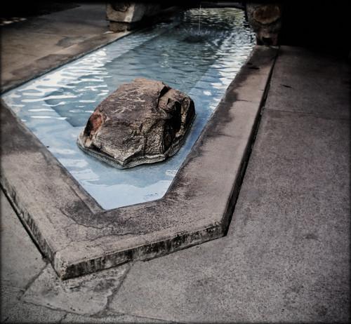 Taliesin West, Pool by Juli Kearns (Idyllopus)
