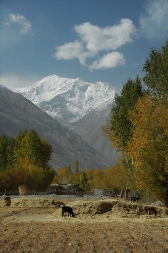 autumn mountains tajikistan centralasia pamirs langar badakhshan wakhanvalley aesdpn sethead pamirmountains