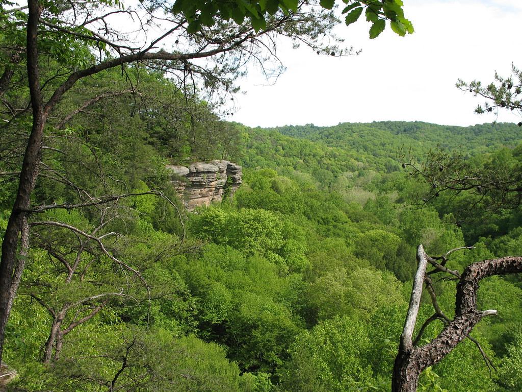 Hollow Rock Nature Park Trails
