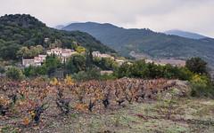 Escagnès, Roquebrun