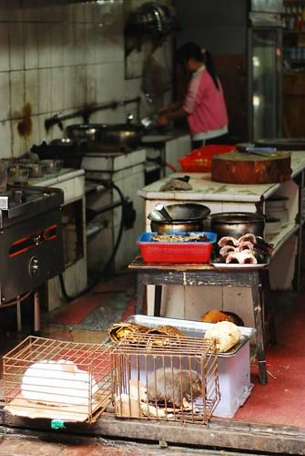 Chinese Restaurant Kitchen Flickr Photo Sharing