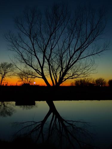 blue sunset reflection tree rural texas olympus mf1 huntcounty e410 28mm28zuiko