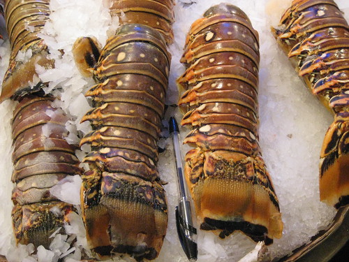 Enormous Lobster Tails