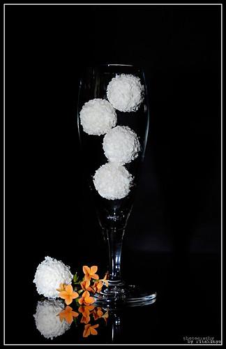 white black flower glass nikon sweet pennsylvania chocolate explore coco d200 ferrero virág raffaello onblack montgomerycounty firstquality fekete fehér csoki nikond200 édes kókusz pohár édesség aplusphoto csokoládé infinestyle almondcoconuttreat nikonflickraward bestof2008spottrhu